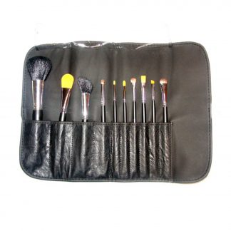 pro brush set